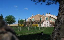 Le Maracla Contry House a Jesi nelle Marche. Giardino esterno.